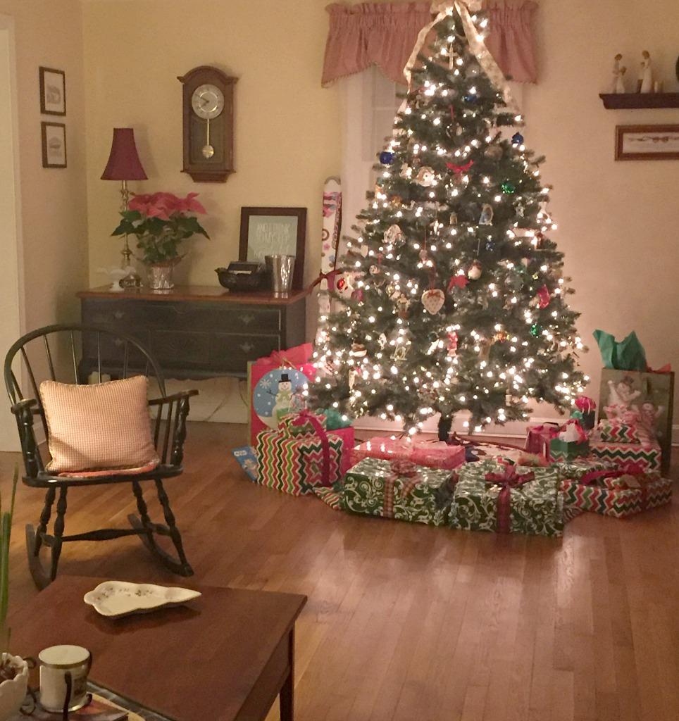 http://blog.myfamilythyme.com/wp-content/uploads/2016/10/Christmas-2015.jpg