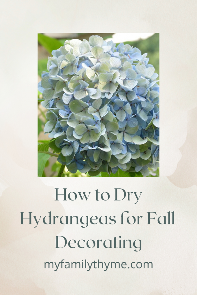 https://myfamilythyme.com/wp-content/uploads/2017/08/dry-hydrangeas-Pinterest-Pin.png