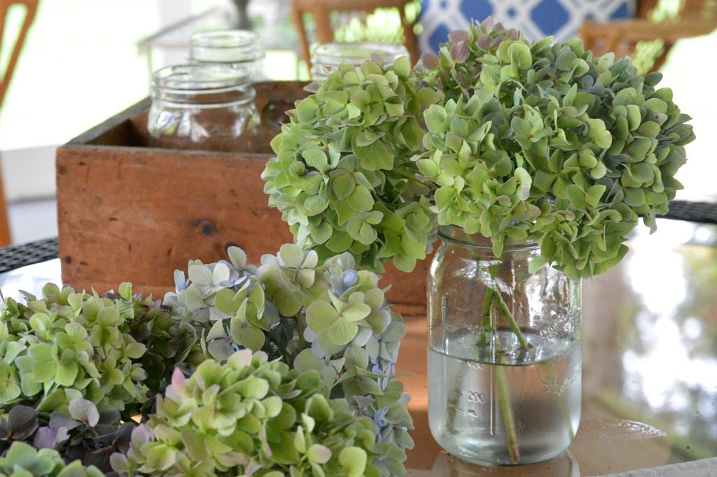 http://myfamilythyme.com/wp-content/uploads/2017/08/hydrangeas-drying-2.jpg