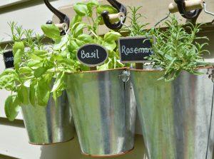 https://myfamilythyme.com/wp-content/uploads/2018/07/hanging-herb-garden-6.jpg