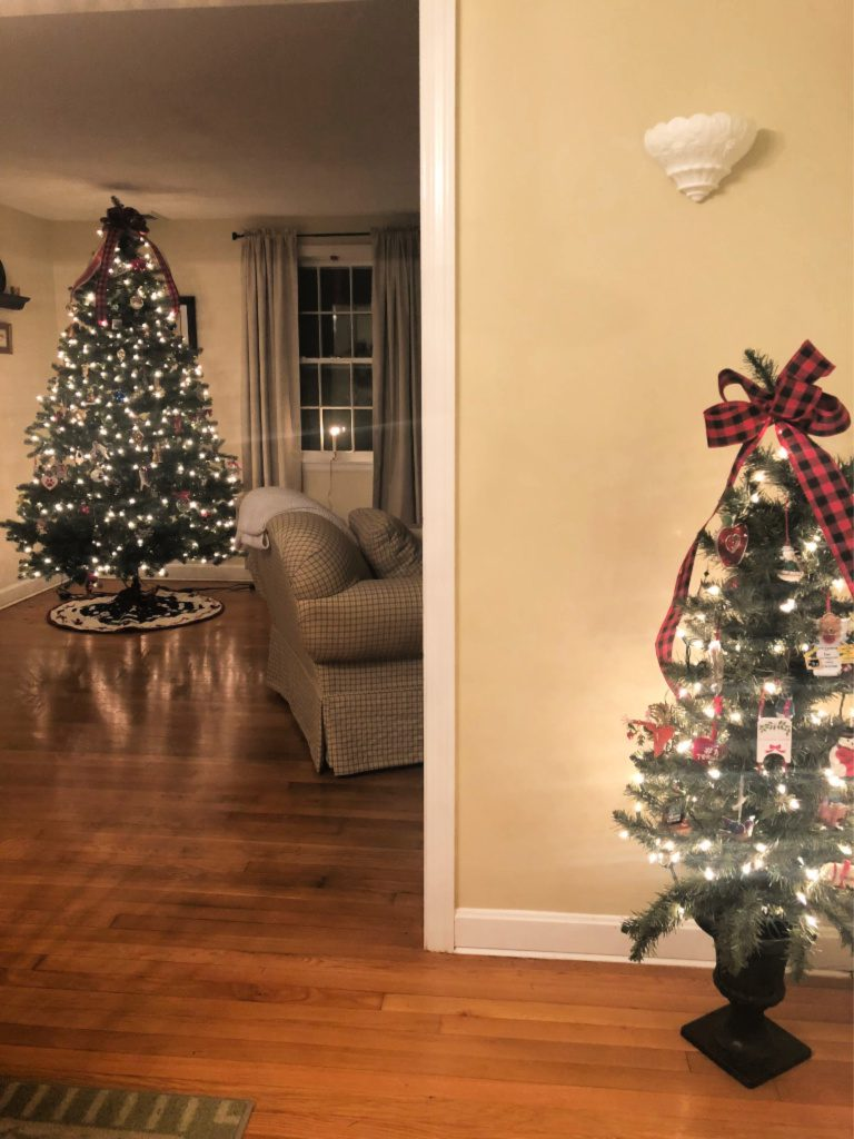 https://myfamilythyme.com/wp-content/uploads/2018/12/Christmas-tree-view.jpg