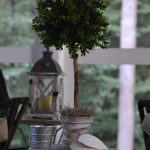 How to Make a DIY Topiary in 5 Easy Steps