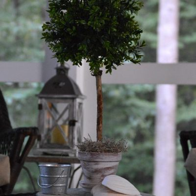 https://myfamilythyme.com/wp-content/uploads/2019/09/diy-topiary-2.jpg