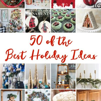 50 + Best DIY Holiday Ideas!