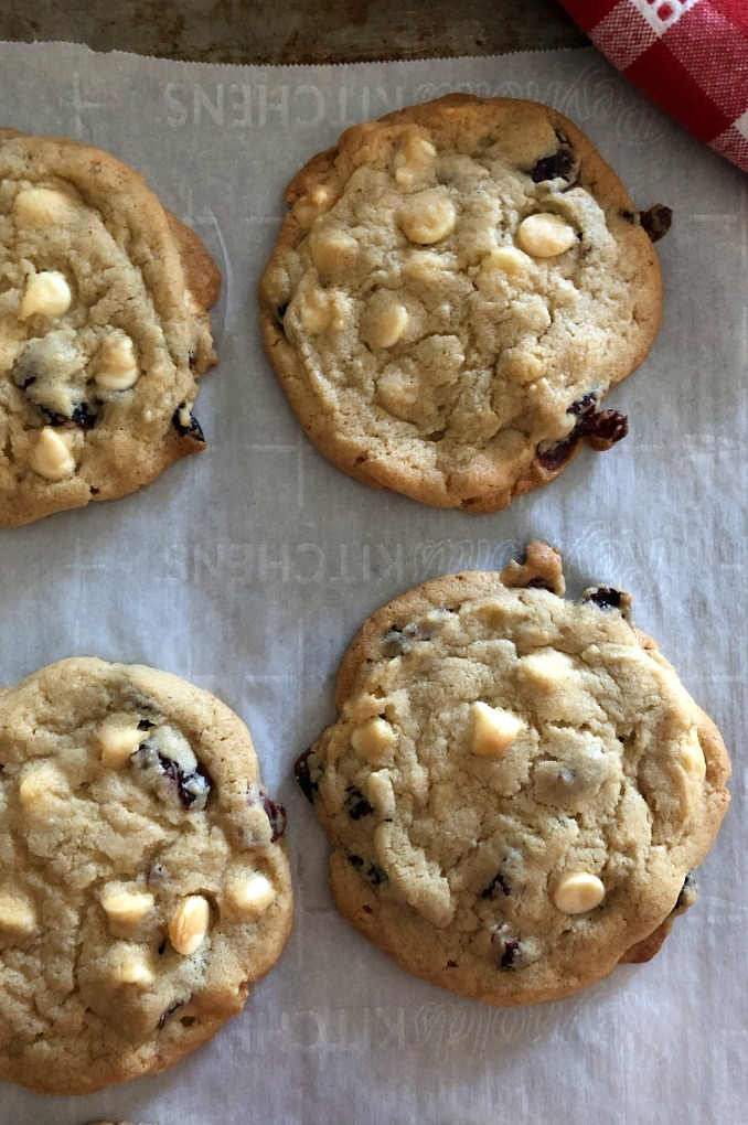 https://myfamilythyme.com/wp-content/uploads/2019/11/cran-cookies-3.jpg
