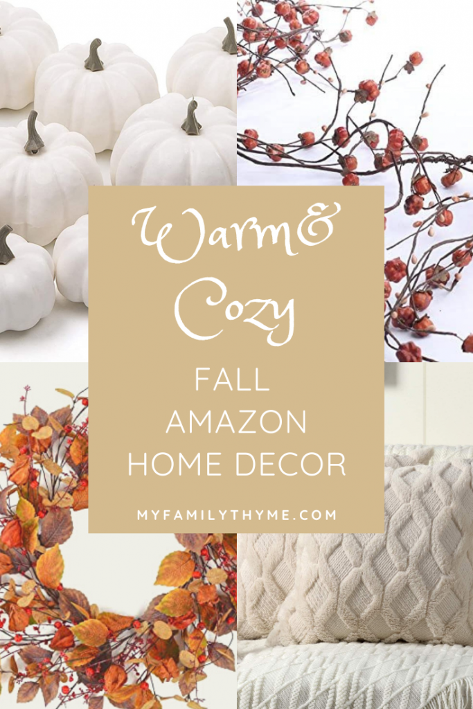 https://myfamilythyme.com/wp-content/uploads/2020/09/warm-and-cozy-fall-Amazon-home-decor-pin-1.png